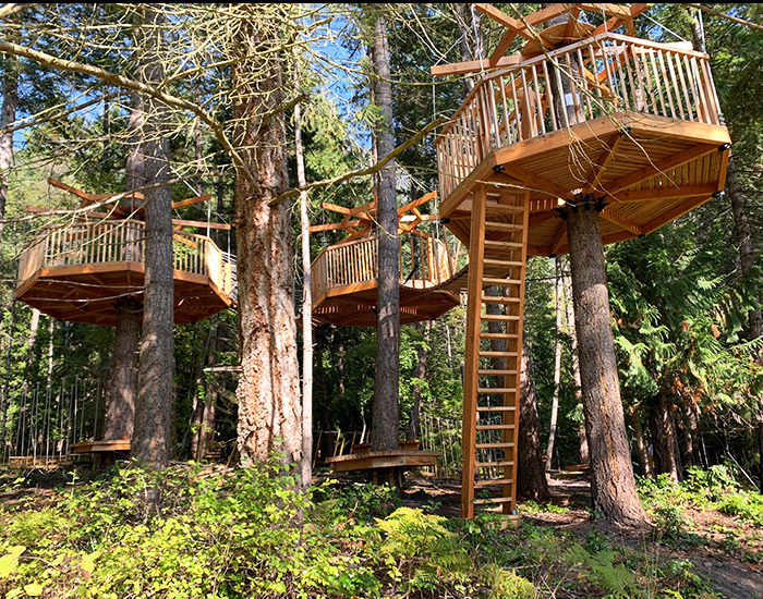 new Low Ropes Course Tree Forts